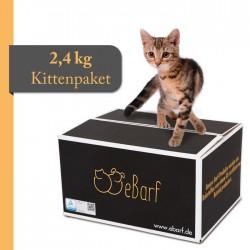 BARF-Paket für Kitten