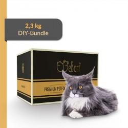 DIY-Paket für Katzen
